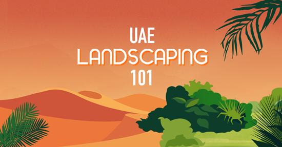 UAE landscaping 101