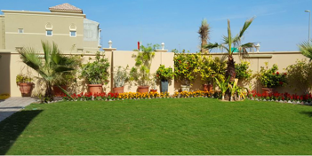 Landscaping in Abu Dhabi