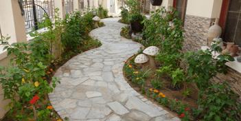 Garden maintenance companies Abu Dhabi